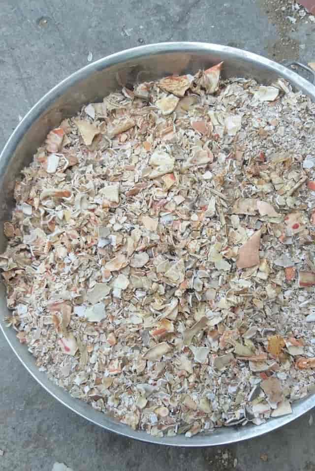 Hãy đến với phuclocfishmeal.com để mua được bột vỏ ghẹ với giá cả cạnh tranh nhất